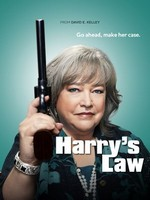 Harry's Law- Seriesaddict